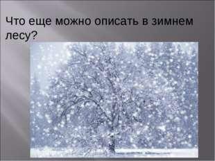 Что еще можно описать в зимнем лесу?