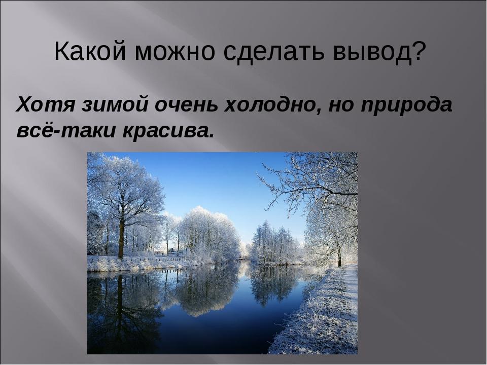 Какой можно сделать вывод? Хотя зимой очень холодно, но природа всё-таки крас...