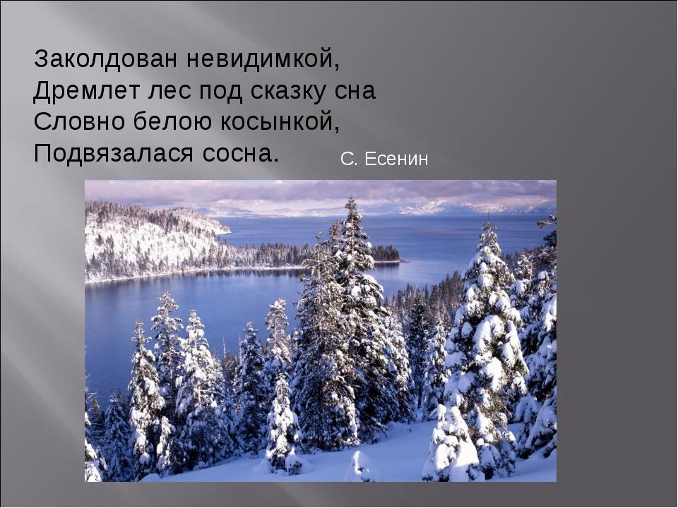 Заколдован невидимкой, Дремлет лес под сказку сна Словно белою косынкой, Подв...