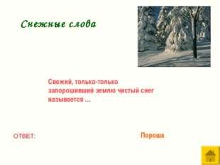 Свежий, только-только запорошивший землю чистый снег называется … ОТВЕТ: Поро