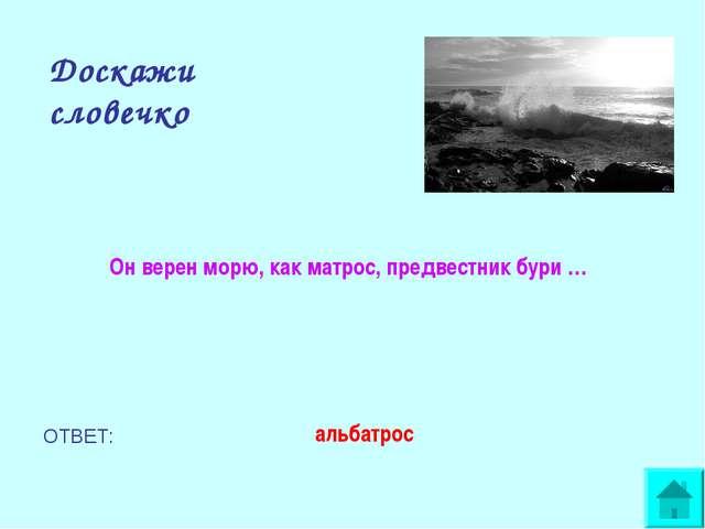 Доскажи словечко Он верен морю, как матрос, предвестник бури … ОТВЕТ: альбатрос