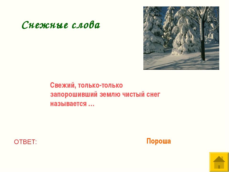 Свежий, только-только запорошивший землю чистый снег называется … ОТВЕТ: Поро...