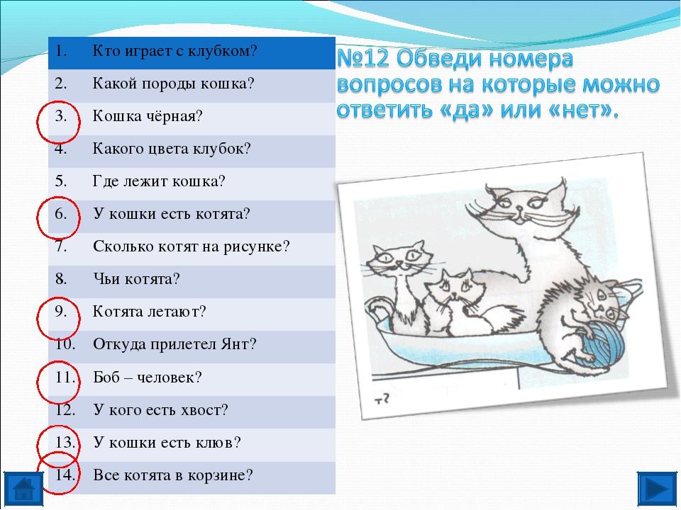 1.Кто играет с клубком? 2.Какой породы кошка? 3.Кошка чёрная? 4.Какого цв...