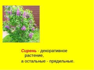 Сирень - декоративное растение, а остальные - прядильные.