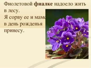 Фиолетовойфиалке надоело жить в лесу. Я сорву ее и маме в день рожденья прин