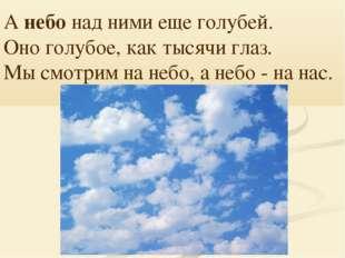 А небо над ними еще голубей. Оно голубое, как тысячи глаз. Мы смотрим на небо