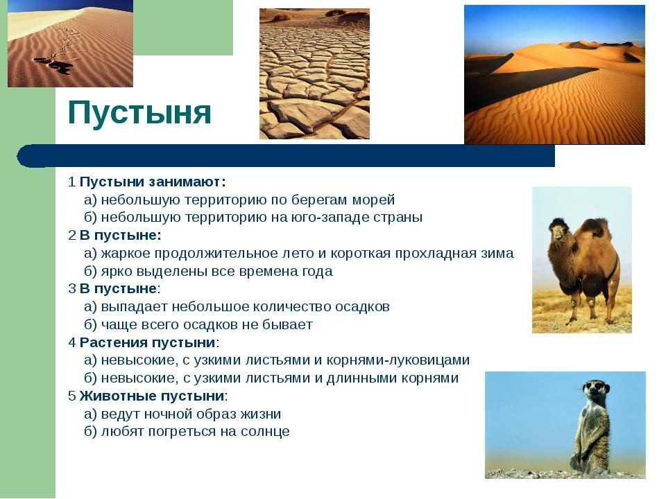Пустыня 1 Пустыни занимают: а) небольшую территорию по берегам морей б) небол...