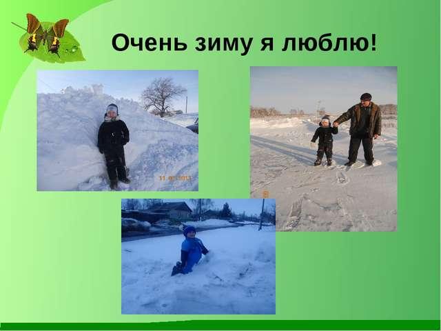 Очень зиму я люблю!