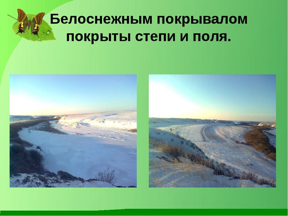 Белоснежным покрывалом покрыты степи и поля.