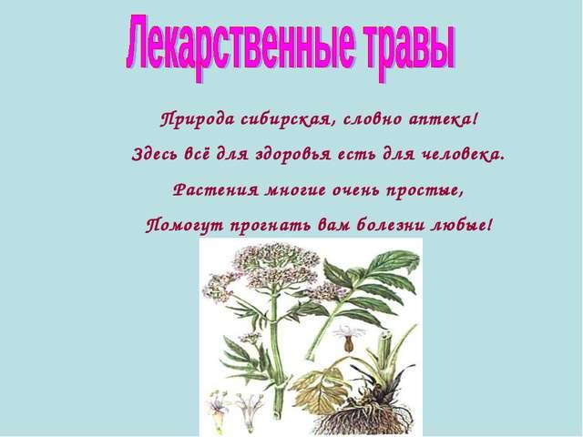 Природа сибирская, словно аптека! Здесь всё для здоровья есть для человека. Р...