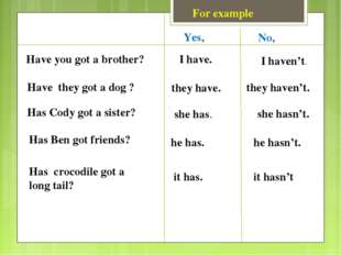 For example Have you got a brother? Have they got a dog ? Has Cody got a sist