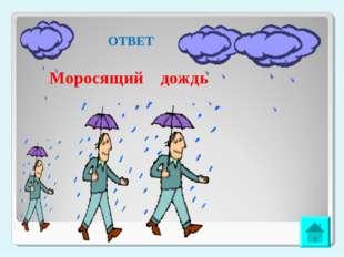 ОТВЕТ Моросящий дождь