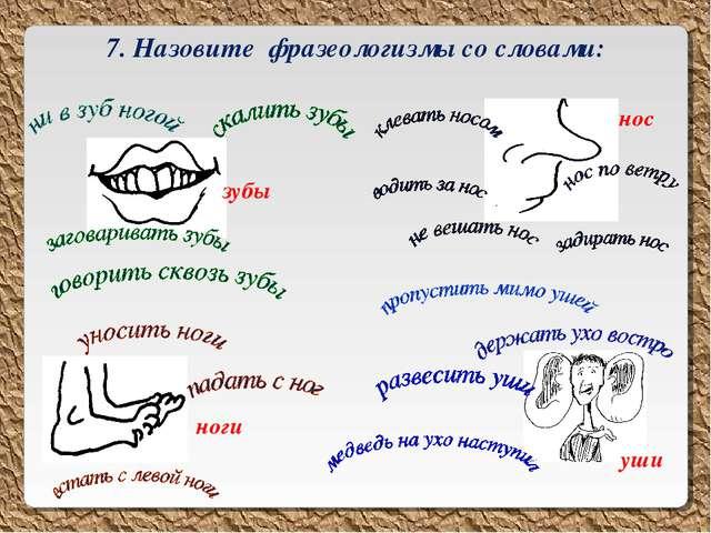 7. Назовите фразеологизмы со словами: зубы нос ноги уши