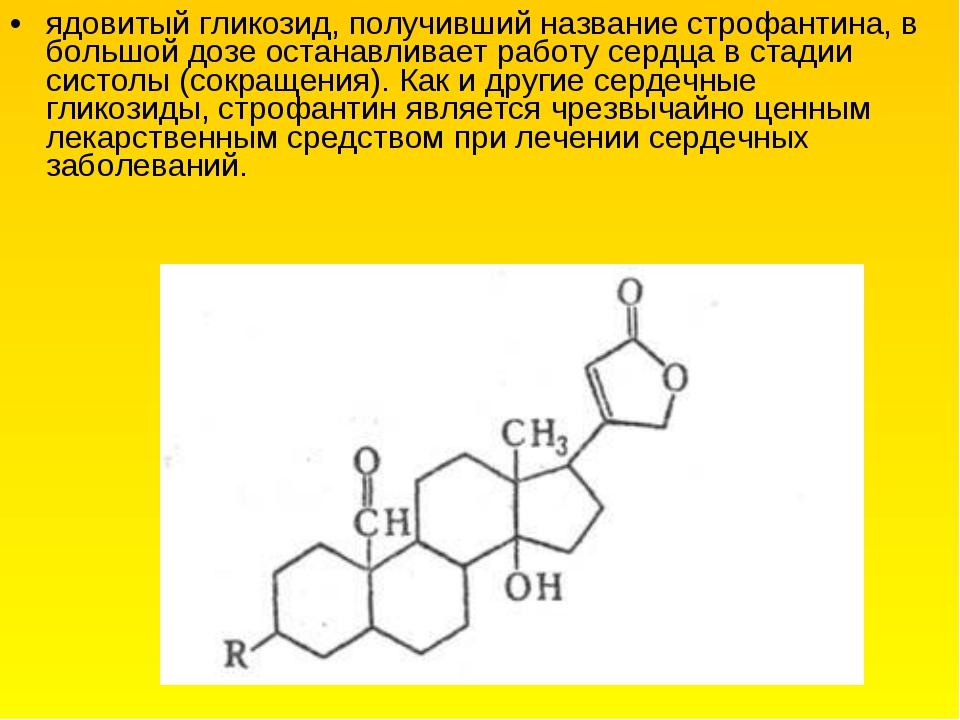 ядовитый гликозид, получивший название строфантина, в большой дозе останавлив...