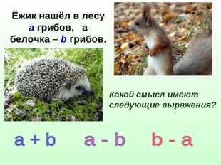 Ёжик нашёл в лесу а грибов, а белочка – b грибов. Какой смысл имеют следующие