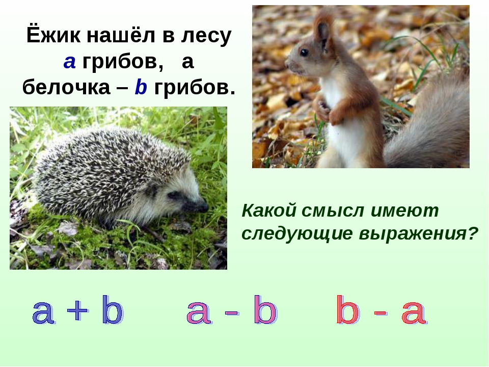 Ёжик нашёл в лесу а грибов, а белочка – b грибов. Какой смысл имеют следующие...