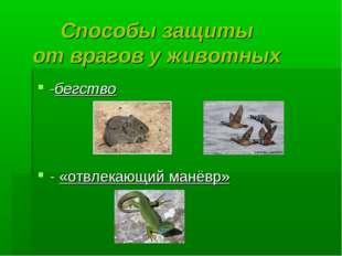 Способы защиты от врагов у животных -бегство - «отвлекающий манёвр»