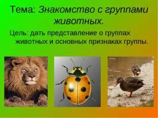 Тема: Знакомство с группами животных. Цель: дать представление о группах живо