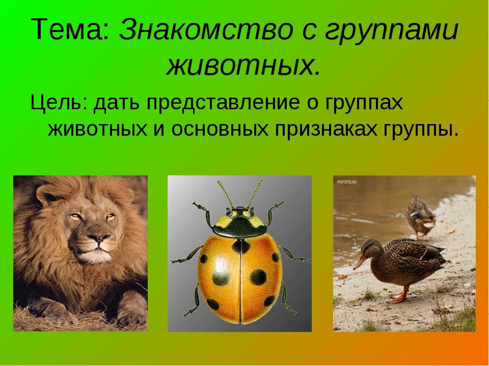 Тема: Знакомство с группами животных. Цель: дать представление о группах живо...