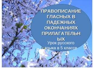 ПРАВОПИСАНИЕ ГЛАСНЫХ В ПАДЕЖНЫХ ОКОНЧАНИЯХ ПРИЛАГАТЕЛЬНЫХ Урок русского языка