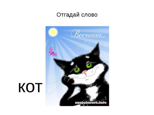 Отгадай слово кот