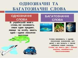 ОДНОЗНАЧНІ ТА БАГАТОЗНАЧНІ СЛОВА В українській мові є слова, які називають ли