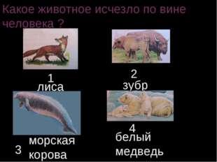 Какое животное исчезло по вине человека ? 1 2 3 4 лиса зубр морская корова бе