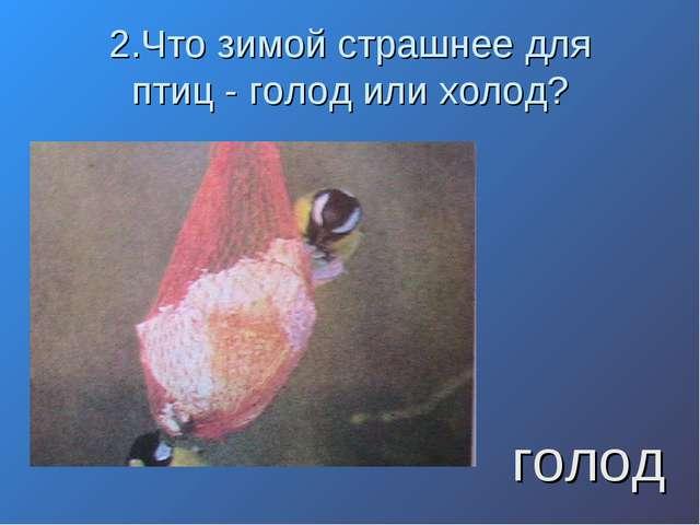 2.Что зимой страшнее для птиц - голод или холод? голод