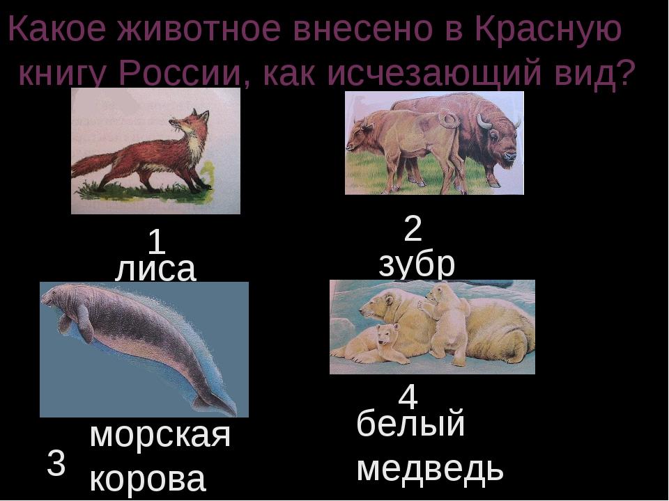 Какое животное внесено в Красную книгу России, как исчезающий вид? 1 2 3 4 ли...