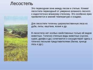 Лесостепь Это переходная зона между лесом и степью. Климат лесостепи переходн
