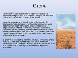 Степь В России она занимает южные районы Восточно-Европейской равнины и Запад