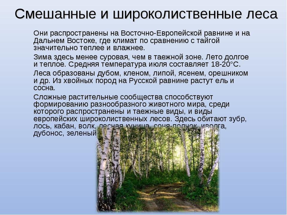 Смешанные и широколиственные леса Они распространены на Восточно-Европейской...