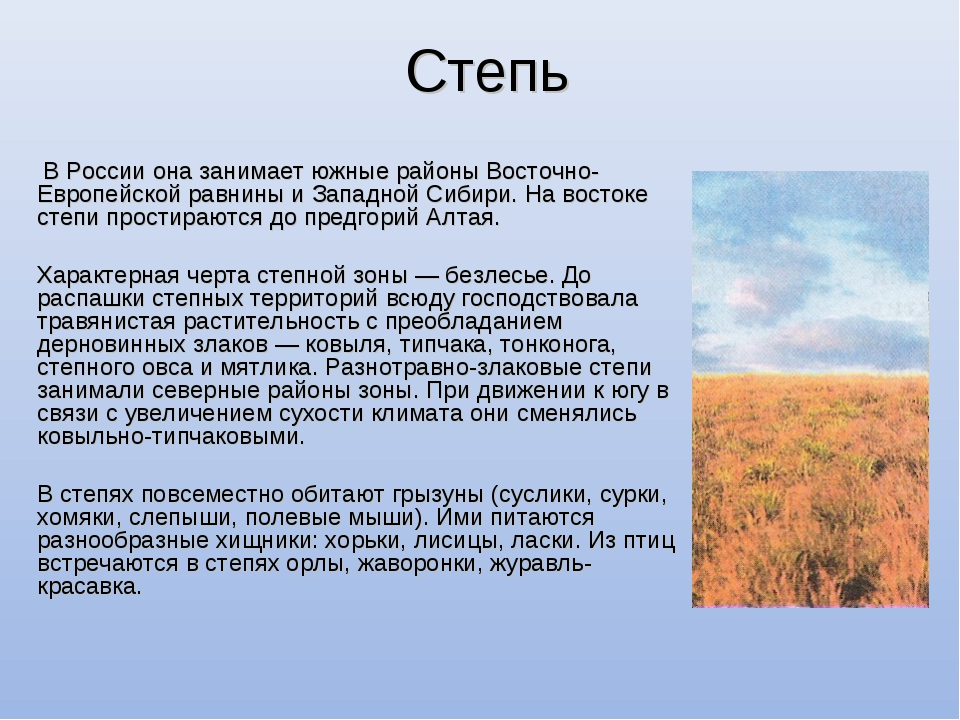Степь В России она занимает южные районы Восточно-Европейской равнины и Запад...