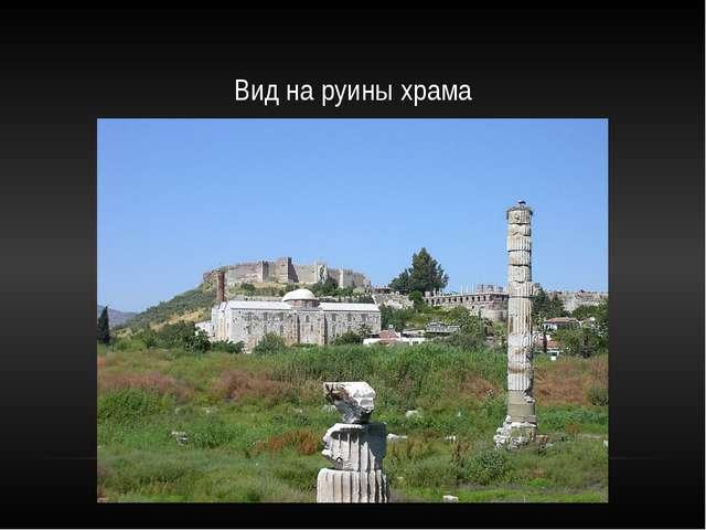 Вид на руины храма