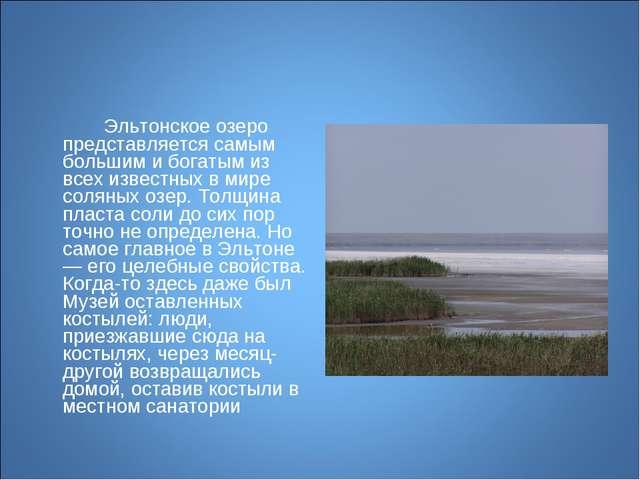 Эльтонское озеро представляется самым большим и богатым из всех известных в...