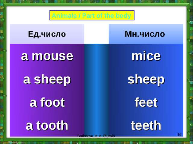 Animals / Part of the body * Smirnova M.V. Plurals. Ед.число		Мн.число a mous...