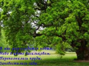 В мае мир глядится новым: Небо в цвете васильковом, Переполнились пруды, Зане