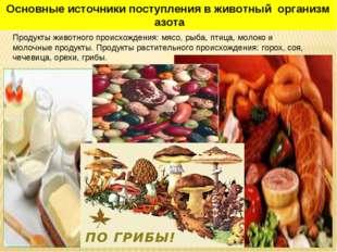 Продукты животного происхождения: мясо, рыба, птица, молоко и молочные продук
