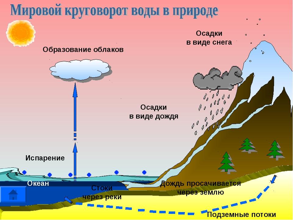 Осадки в виде снега Образование облаков Осадки в виде дождя Дождь просачивает...
