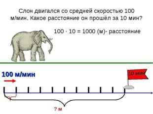 Слон двигался со средней скоростью 100 м/мин. Какое расстояние он прошёл за 1