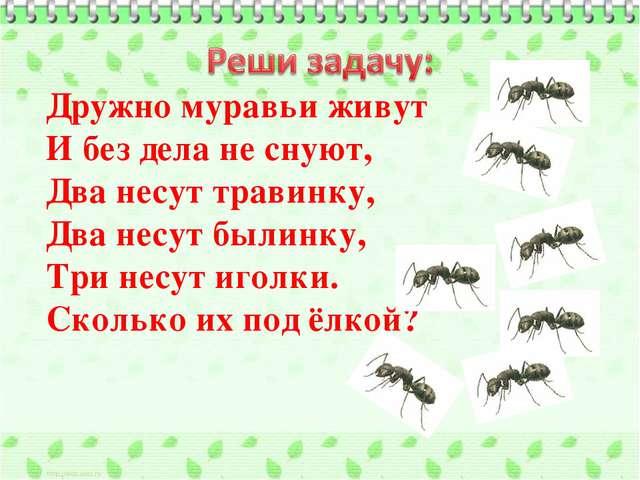 Дружно муравьи живут И без дела не снуют, Два несут травинку, Два несут былин...