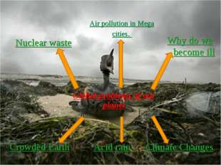 Nuclear waste Air pollution in Mega cities. Why do we become ill Crowded Eart