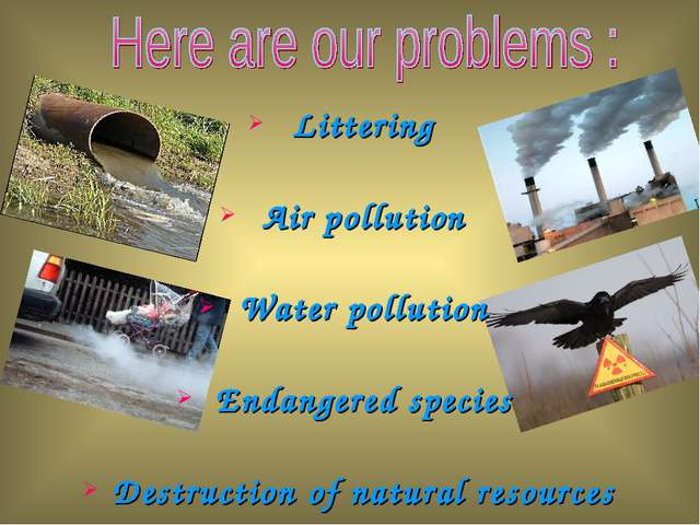 Littering Air pollution Water pollution Endangered species Destruction of nat...
