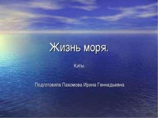 Жизнь моря. Киты. Подготовила Пахомова Ирина Геннадьевна