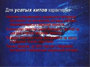Для усатых китов характерно Наличие специального цедильного аппарата, состоящ