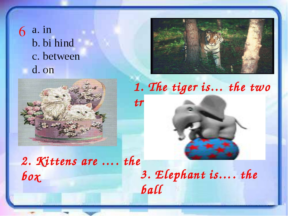 1. The tiger is… the two trees in bi hind between on 6 2. Kittens are …. the...