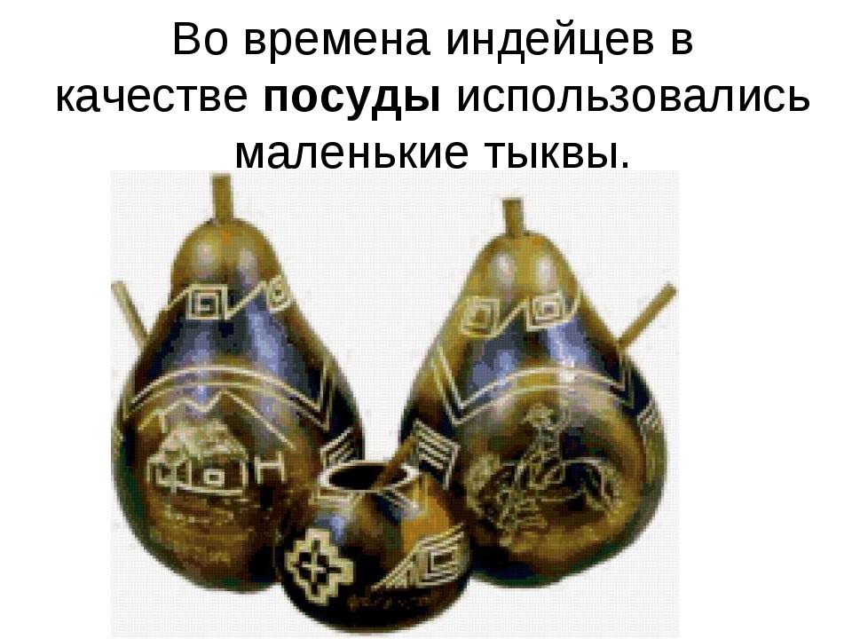Во времена индейцев в качествепосудыиспользовались маленькие тыквы.