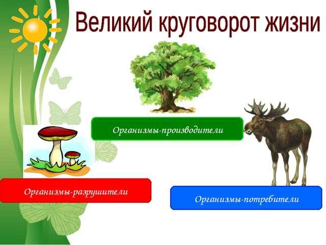 Free Powerpoint Templates Организмы-производители Организмы-потребители Орган...