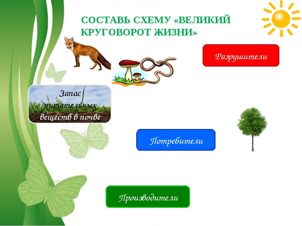 Free Powerpoint Templates Потребители Производители Разрушители Запас питател...