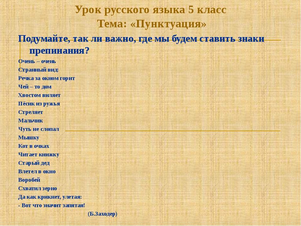 Урок русского языка 5 класс Тема: «Пунктуация» Подумайте, так ли важно, где м...